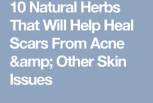 Herbalism: skin