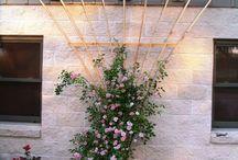опоры для плетистых роз