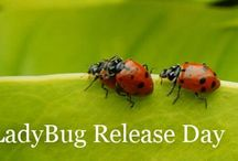 Learning about Ladybugs / If you come to our annual Ladybug Release Day, you'll discover why ladybugs are good to have around. You can learn more about these critters by checking out these links!