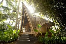 дома из дерева и бамбука