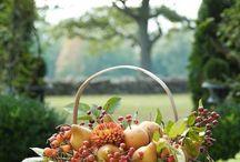 autunno che passione!!