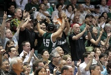 Hawaii Fans! / University of Hawai'i Fans / by Hawaii Athletics