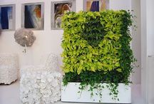 Green walls / Inspiration for covering an ugly fence