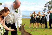 Weddings / Waterfront Retreat at Wattlepoint