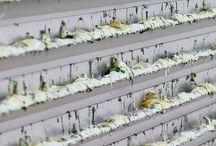 """KONZEPT (20.10.2014-30.11.2014) / Die Ausstellung """"KONZEPT"""" ist der sechste Teil der Ausstellungsreihe «Collector's Choice Only», die 2014 anlässlich des 10jährigen Jubiläums des Kunstraum Alexander Bürkle gezeigt wurde. Sie lenkte den Blick auf einen weiteren Leitbegriff, der repräsentativ für die thematische Ausrichtung der Sammlung der Ege Kunst- und Kulturstiftung ist.   Mit u. a. Alan Charlton, Christian Frosch, Anna Leonie, Tom Benson, Bernhard Härtter"""