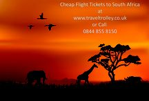 Cheap Flight to South Africa / Cheap Flights to South Africa Book Cheap Flights Tickets to South Africa  at Travel Trolley UK.