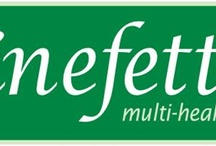 Fine Fettle / Fine Fettle; a popular 19th century saying, fettle was a verb which meant to put in order or arrange properly. To be in fine fettle was to be well organized to do something.