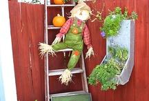Autumn at The Garden Cottage