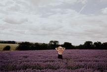 Lavender & Sage Photography