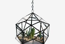 Nest / by Cambria Bacher