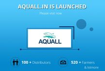 aquall