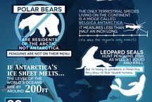 Reisen - Antarktis / Auf dieser Pinnwand pinne ich Pins mit Tipps und Empfehlungen für Reisen in die Antarktis.