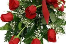 Send Flowers to Noida Online with Free Home Delivery
