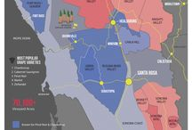 California - wine maps