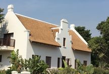 Thatched Roofs & Houses