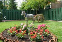 Beautiful Gardens / Gardening - through beautiful pictures.