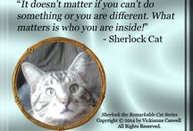 Sherlock's Quotes / Sherlock the Remarkable Cat Series quotes from the characters (not in the books but from the morals in them).