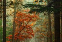nature you so pretty