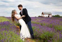 My Wedding Shots / Phil Watson Photography Wedding shots