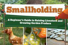 Smallholding