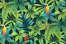 Thème Jungle // Amazonie