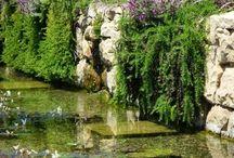garden Brno