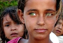 EYES, THE WINDOW TO OUR SOUL / Eyes, green, kids. Adults