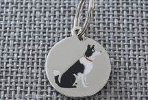 Beautiful Border Collie Things / This board is about beautiful Border Collie related gifts and products.