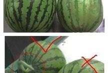 culture melons