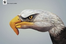 Adverts / Clever and inspiring ways to promote, advertise and sell / by Philip Jeyes
