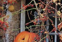 Halloween / Everything Halloween