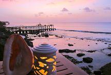 Bali / Resor