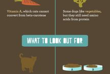 Pet Nutrition & Guidelines