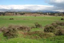 Enjoy the silence on this large plot near Gythion/Greece