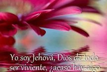 frases   biblicos