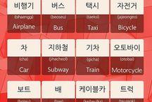 Study korean