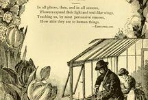Старинные публикации