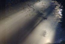 солнечный туман