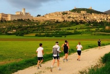 RUNNING / run through the umbrian country is an amazing experience