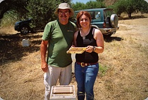Friends & Beekeeping / Beekeeping in various parts of the World....