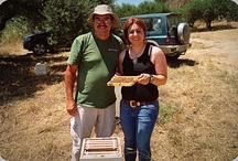 Friends & Beekeeping / Beekeeping in various parts of the World....
