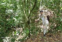 República Dominicana / Back to nature trip taken in June 2012 / by Jason Wicker