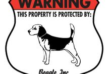 Beagle Signs and Pictures / Warning and Caution Beagle Signs. https://www.signswithanattitude.com/beagle-signs.html