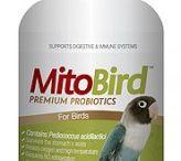 MitoMax Probiotics