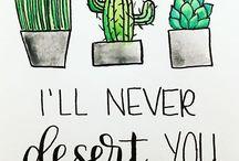 Everything cactus