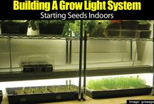 Growing Indoors / Growing Indoors - From plants to indoor growing systems