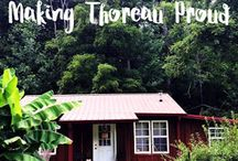 Tiny Cabin in the Woods  / We are making Thoreau proud by living simply in East Tennessee. Take a peek into our tiny cabin lifestyle and plans.