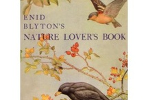 Books: math, science and nature / by Anne Woodard