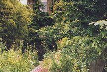 urnan gatden / Garden