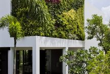Living Façade Vertical Garden Ideas
